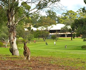 Pambula Merimbula Golf Club - eAccommodation