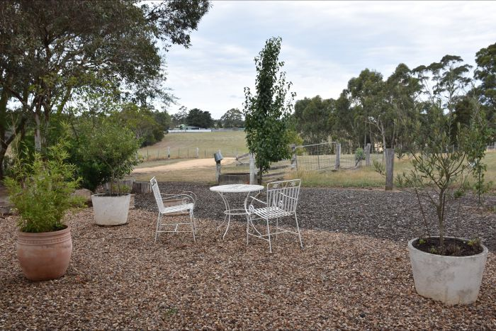 Cygnet Park Country Retreat - eAccommodation
