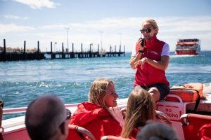Rottnest Island Tour from Perth or Fremantle including Adventure Speed Boat Ride - eAccommodation