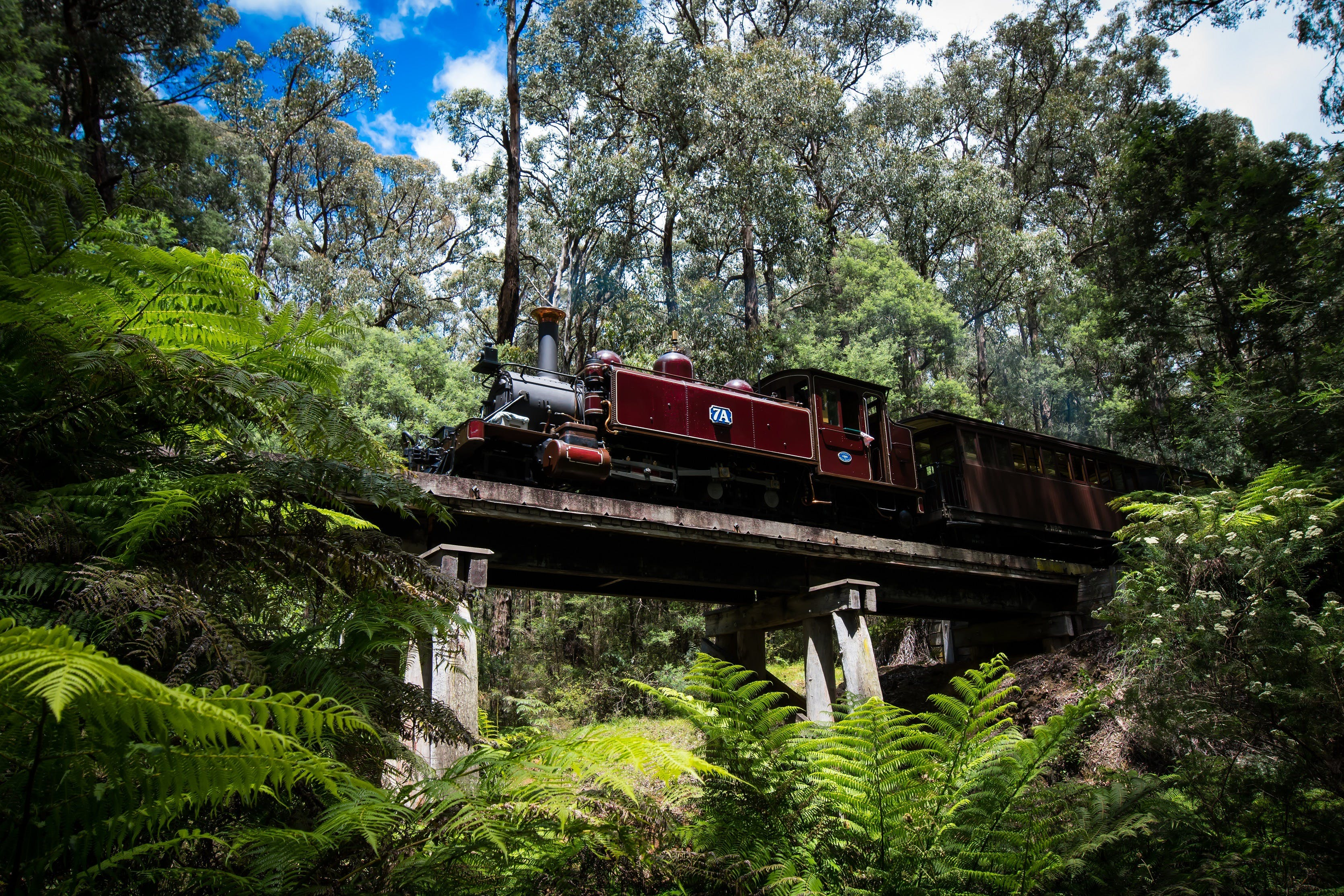 Puffing Billy Railway - eAccommodation