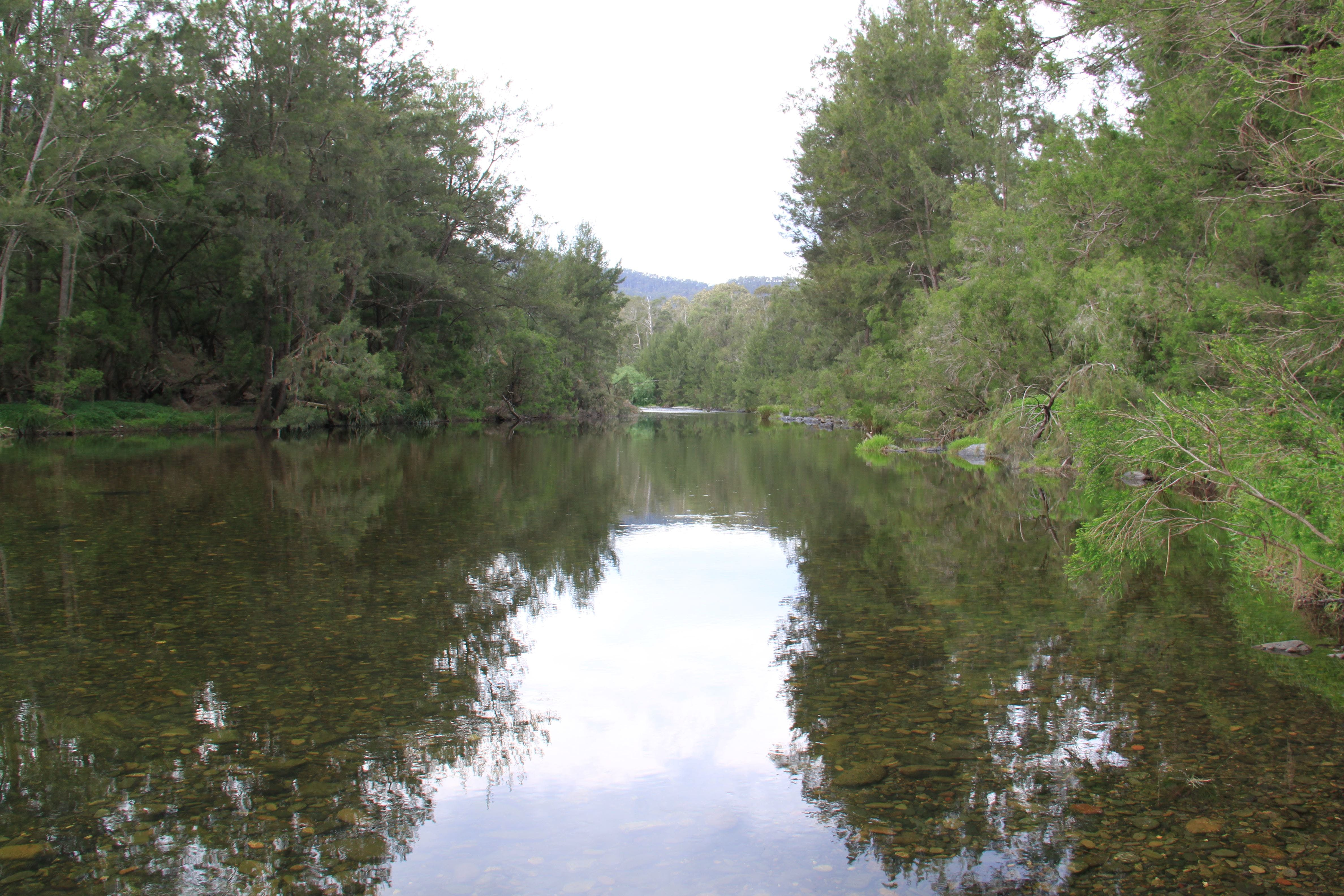 Riverside Campground and Picnic Area - eAccommodation