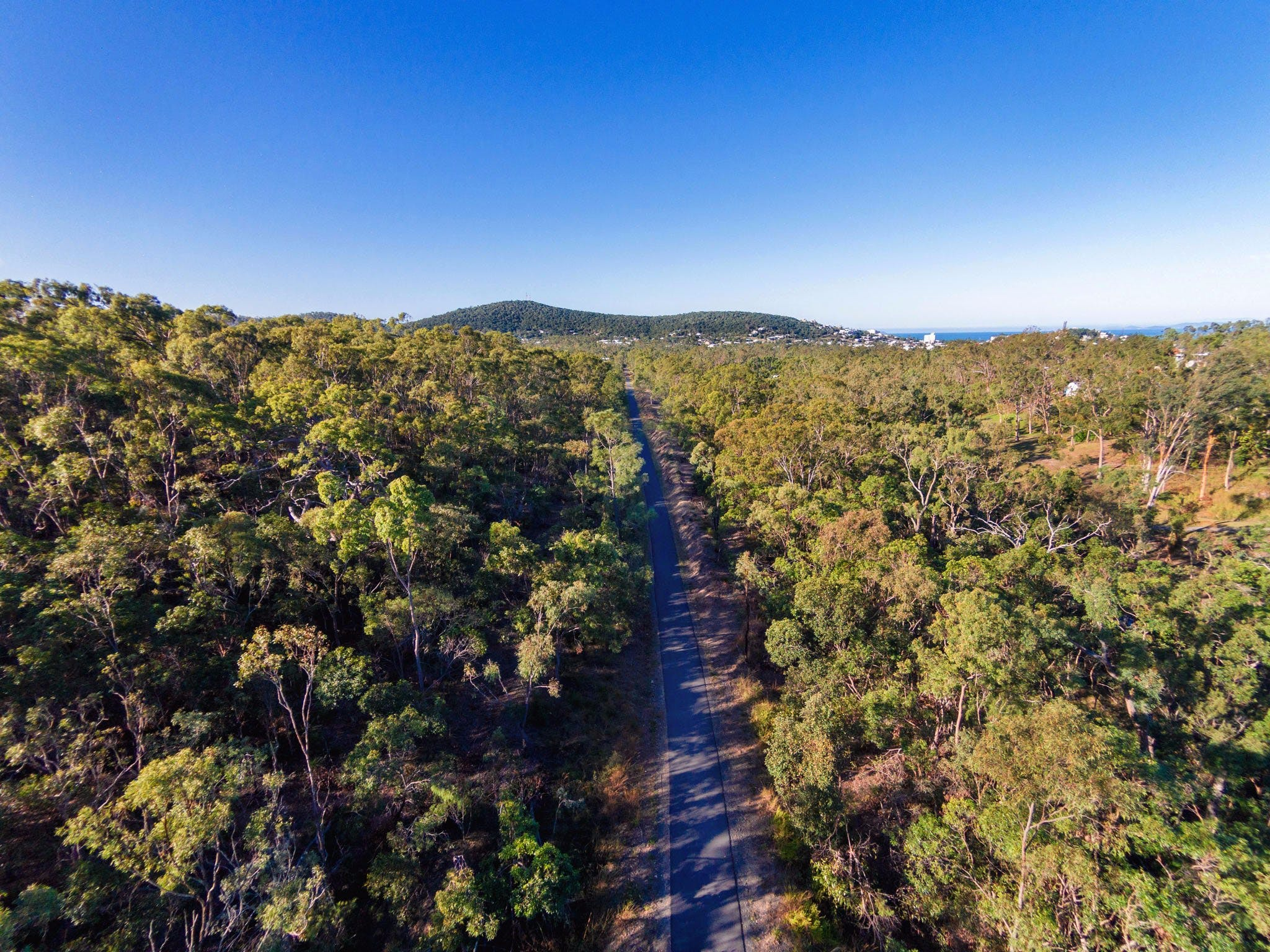 Capricorn Coast Pineapple Rail Trail - eAccommodation
