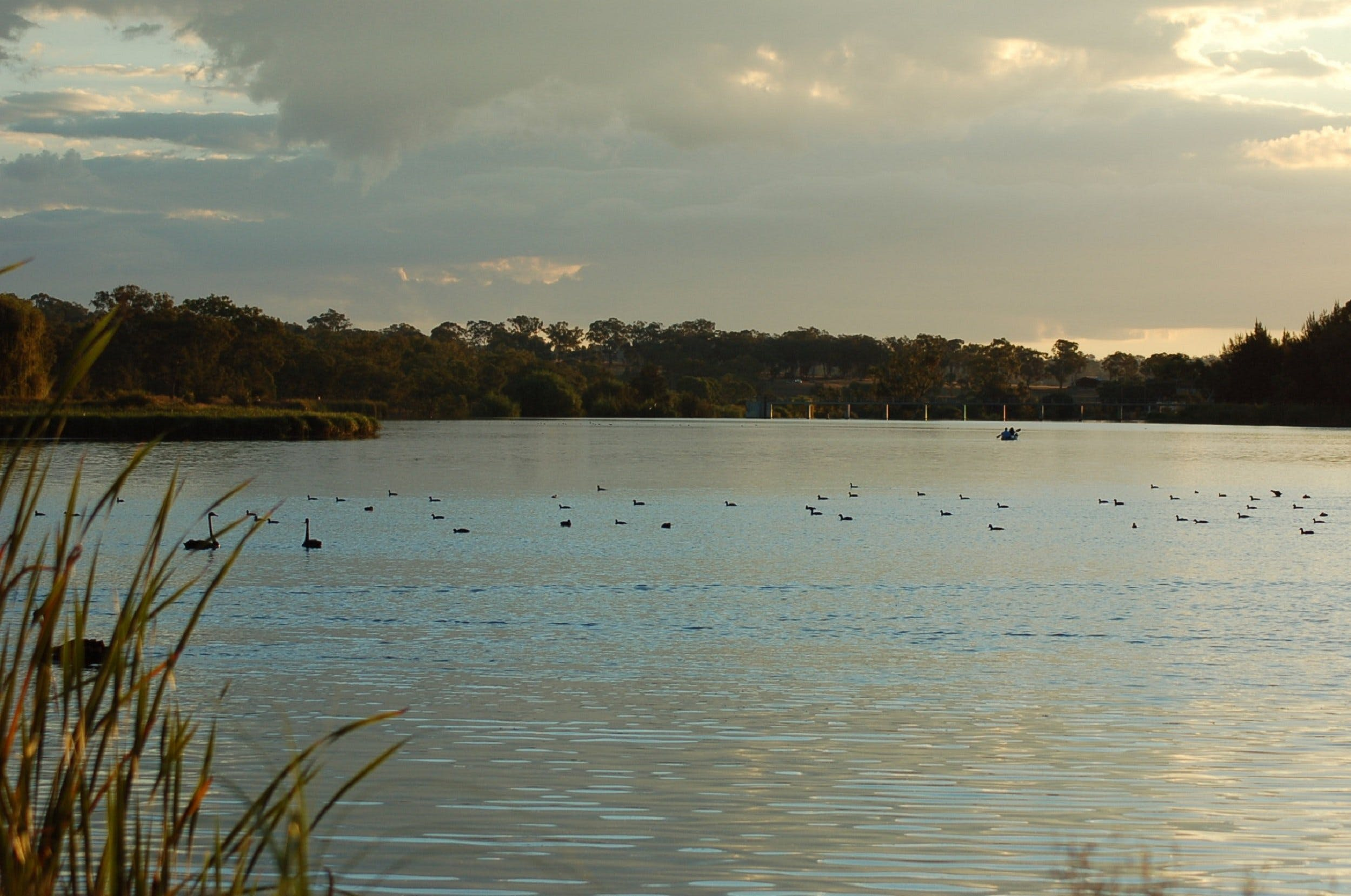 Lake Inverell Reserve - eAccommodation