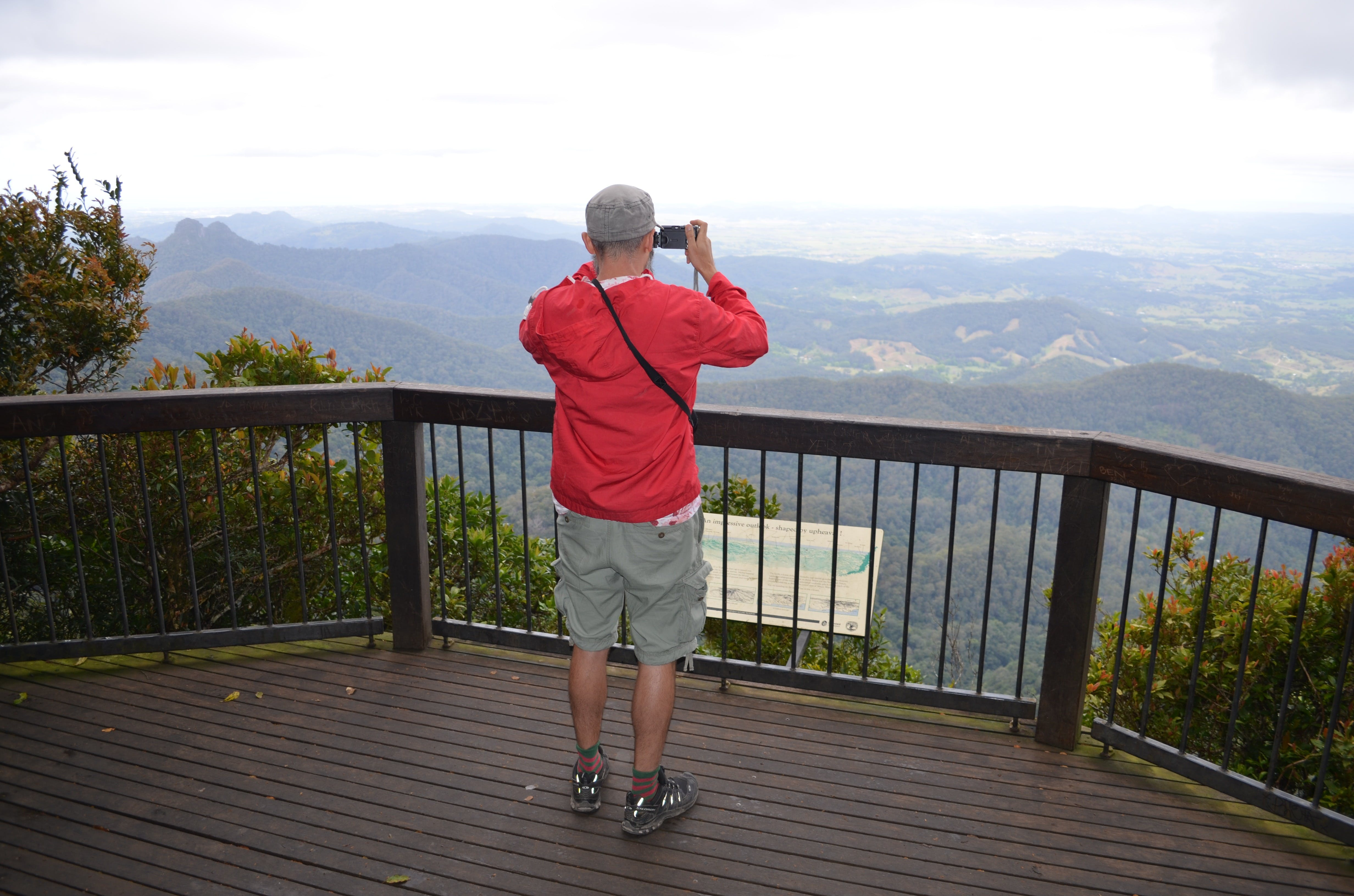 Best of All lookout track Springbrook National Park - eAccommodation