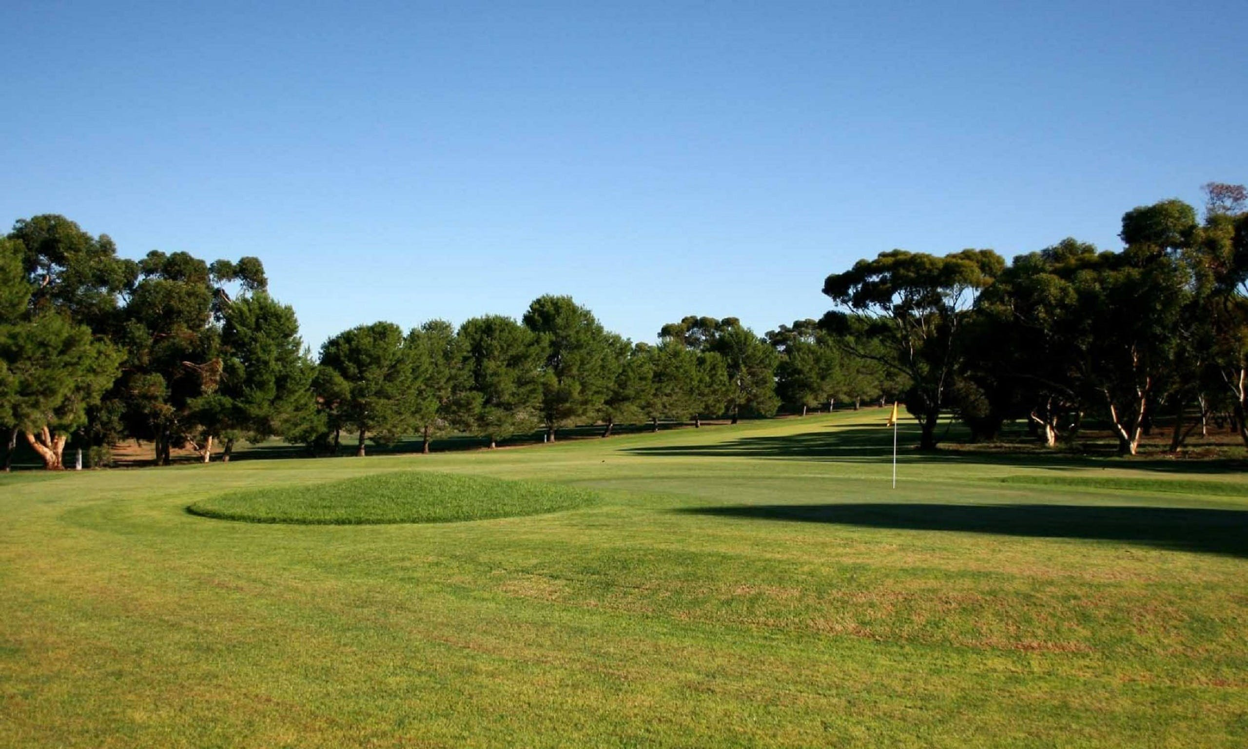 Mannum Golf Club - eAccommodation