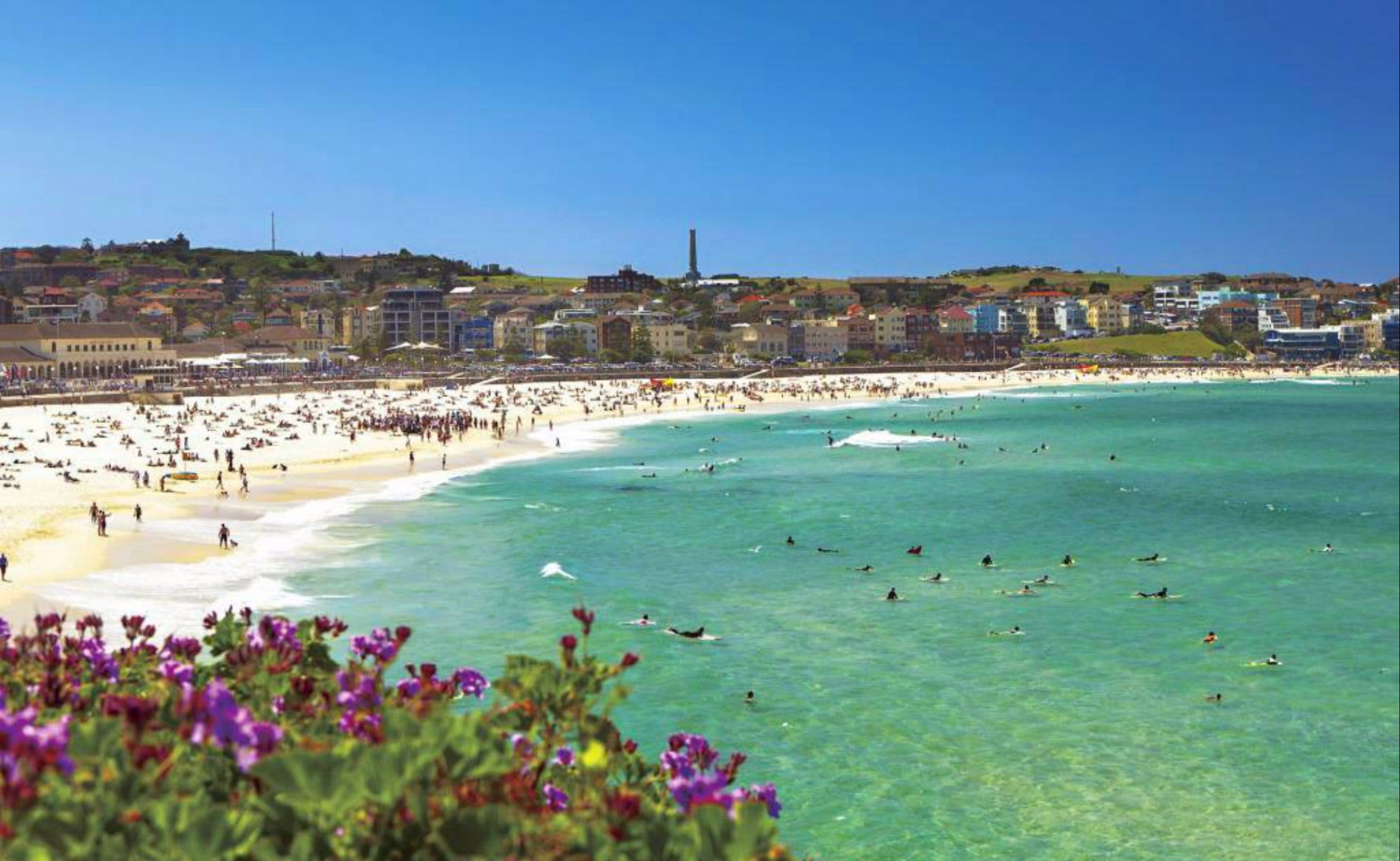 Bondi - eAccommodation