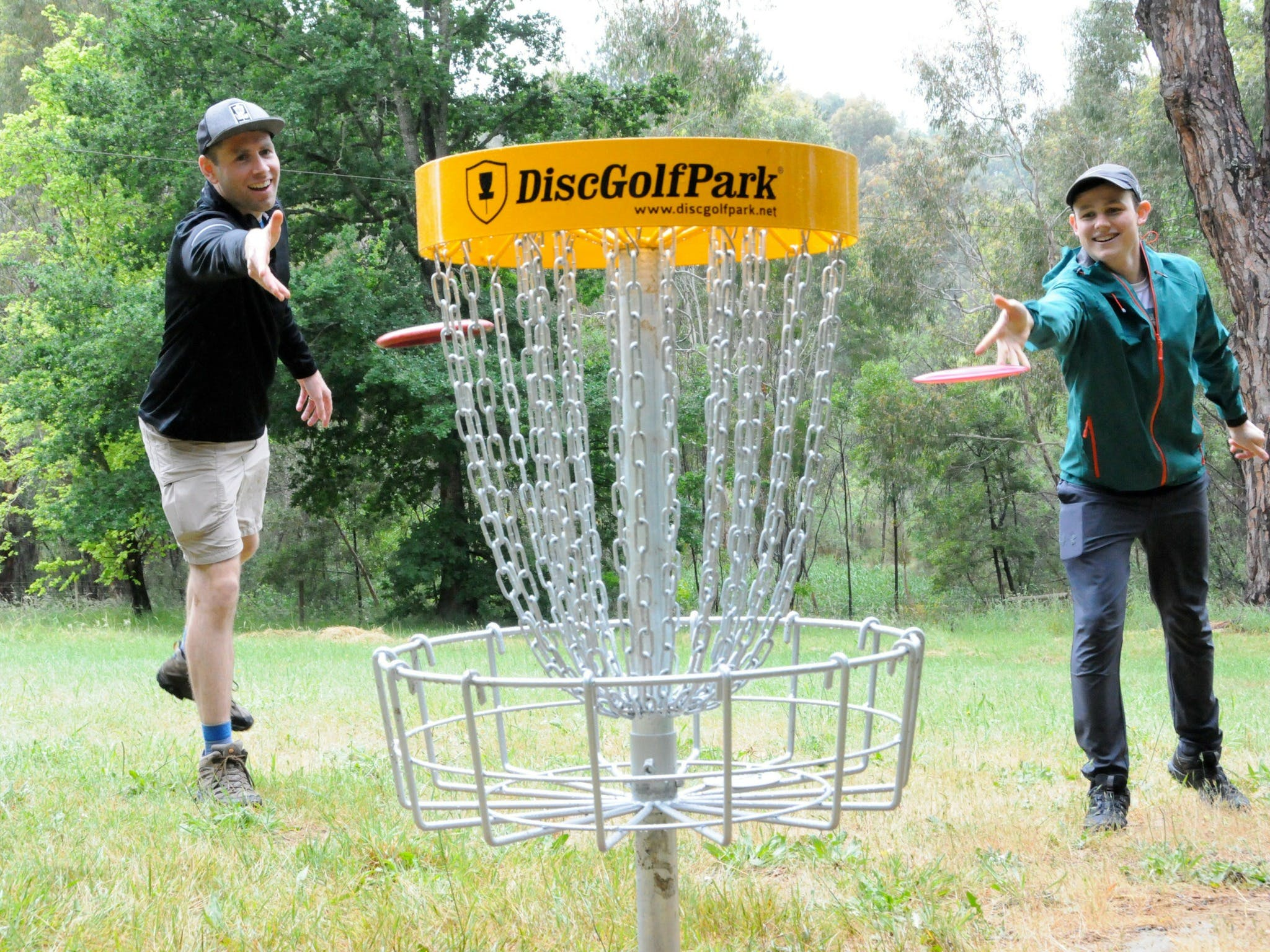 Disc Golf - eAccommodation
