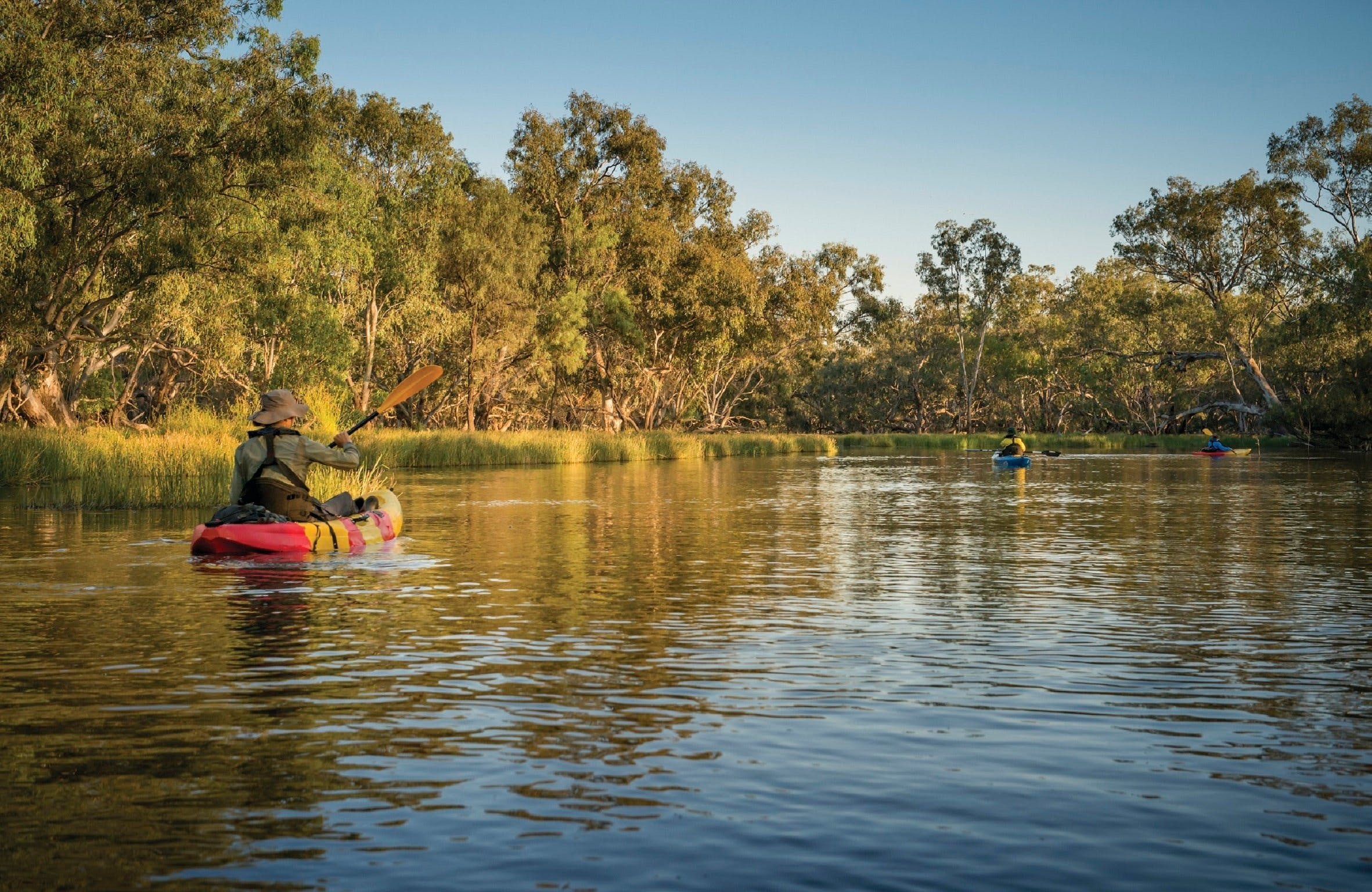Macquarie Marshes Nature Reserve - eAccommodation