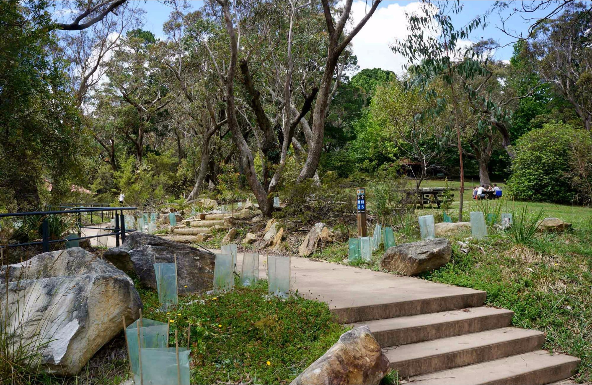 Wentworth Falls picnic area - eAccommodation