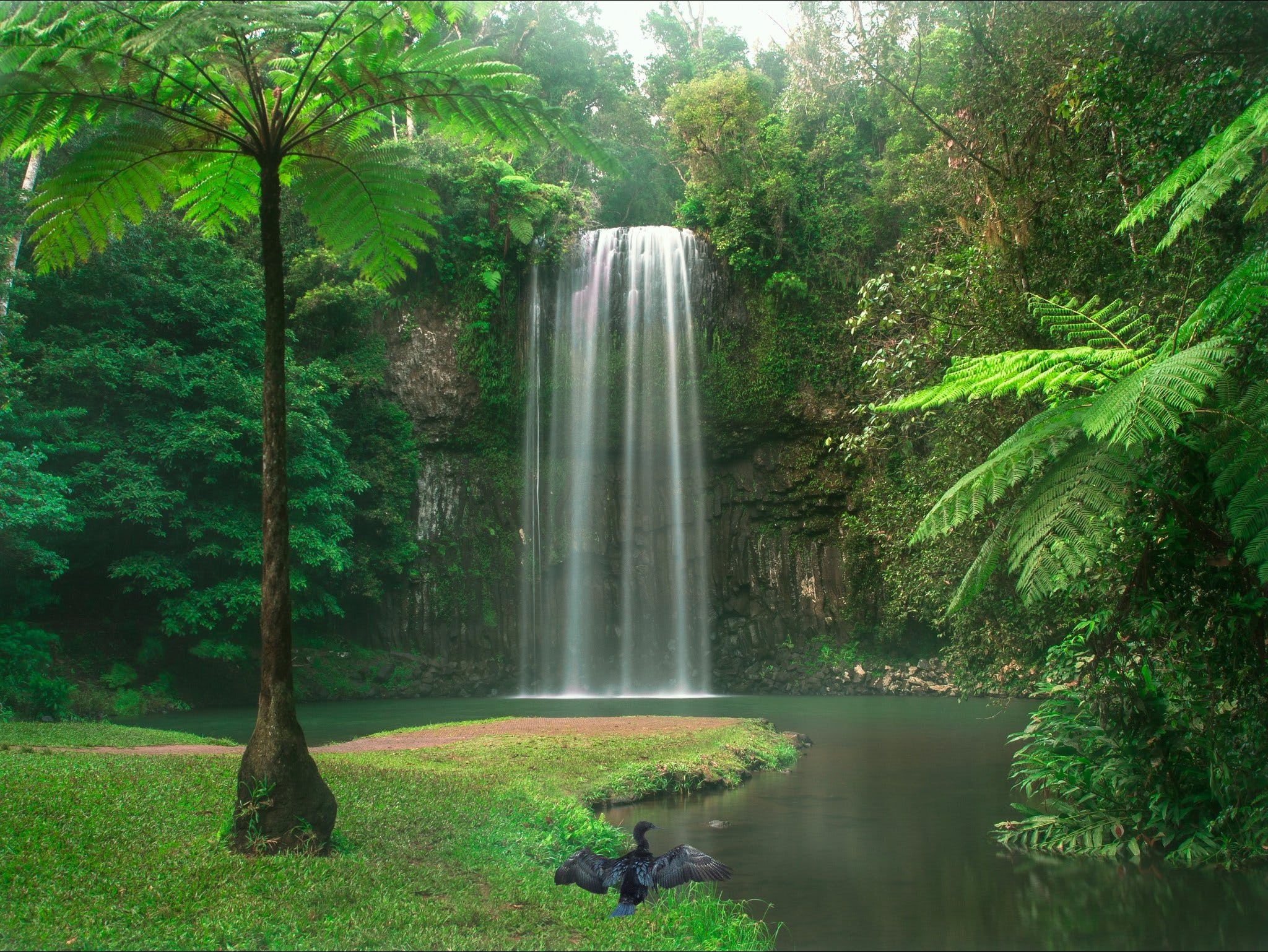 Atherton Tablelands - eAccommodation