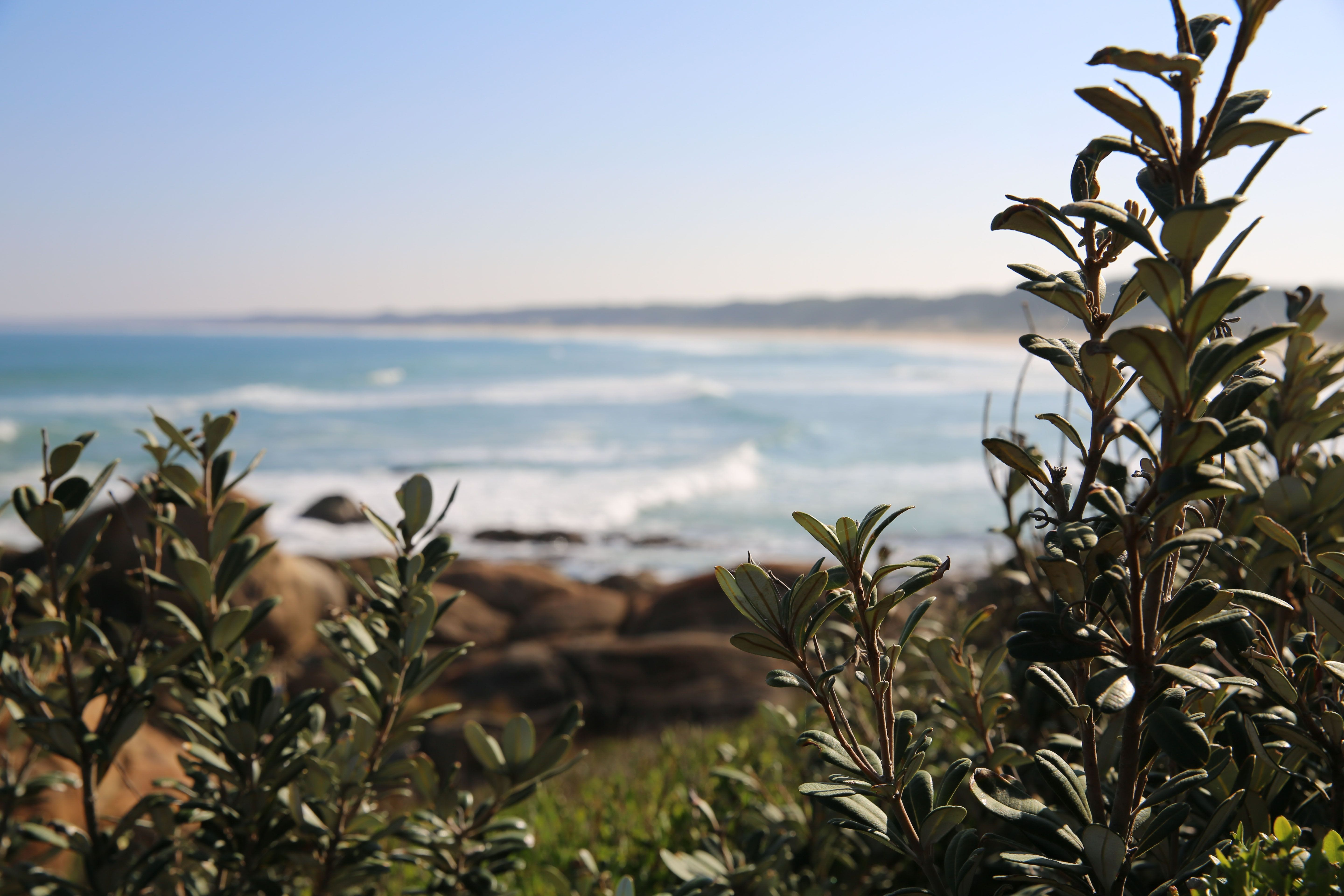 Cape Conran Coastal Park - eAccommodation