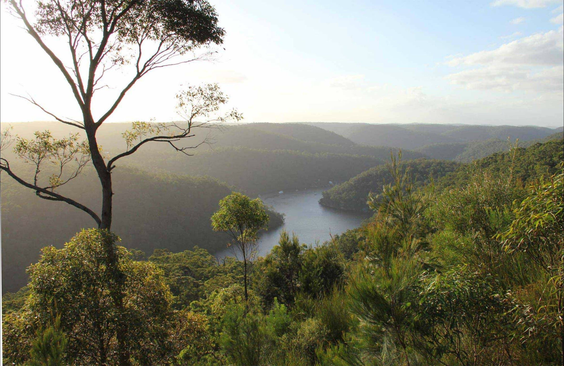 Great North walk - Berowra Valley National Park - eAccommodation