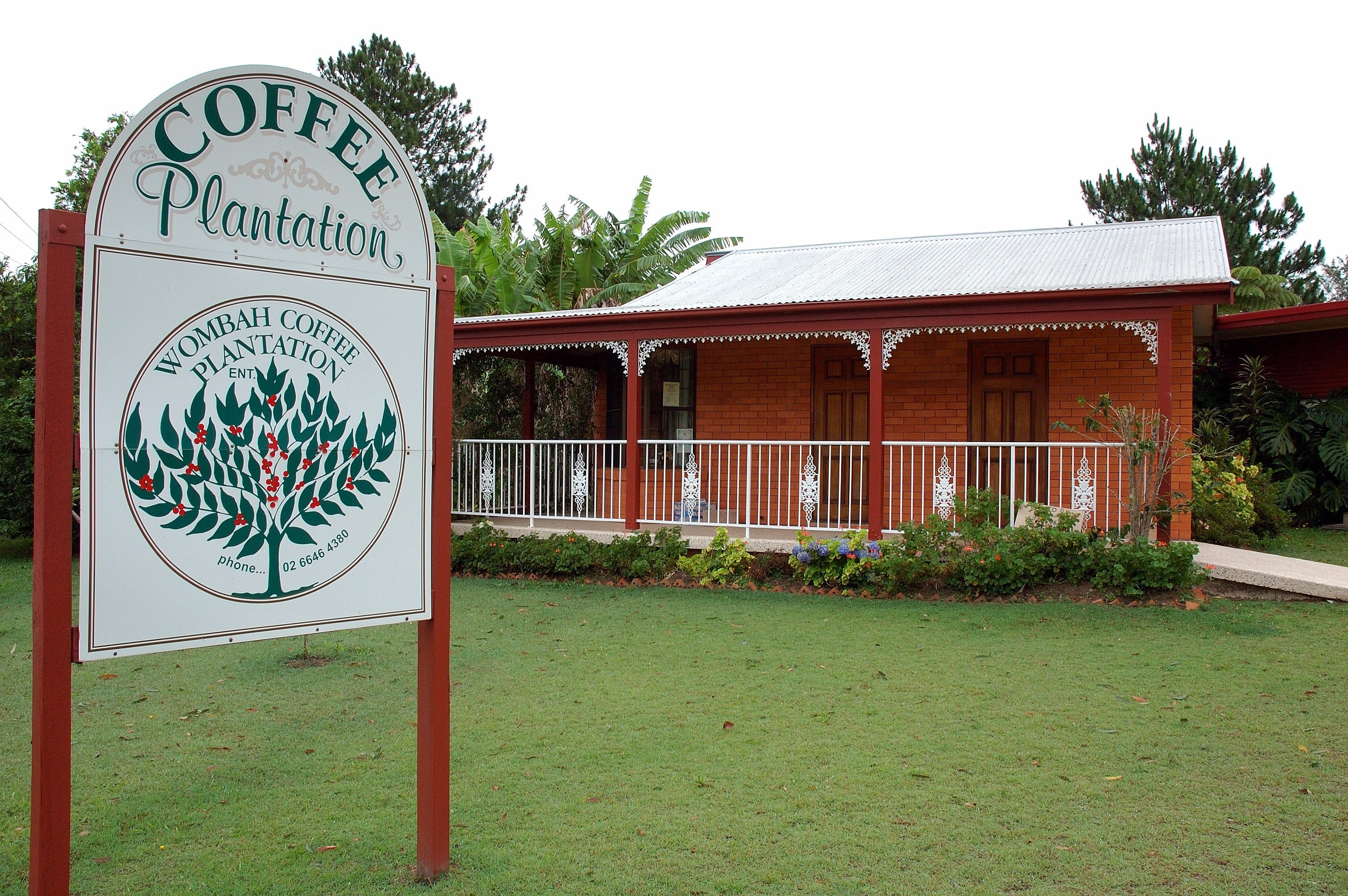 Wombah Coffee Plantation - eAccommodation