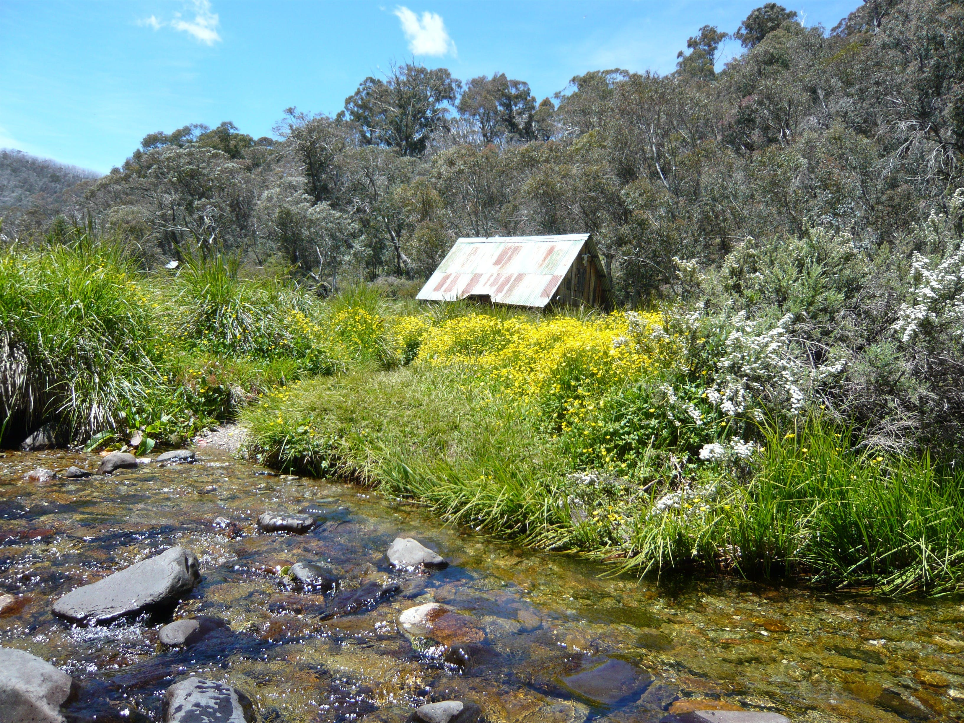 Hedonistic Hiking's Falls Creek to Hotham - eAccommodation