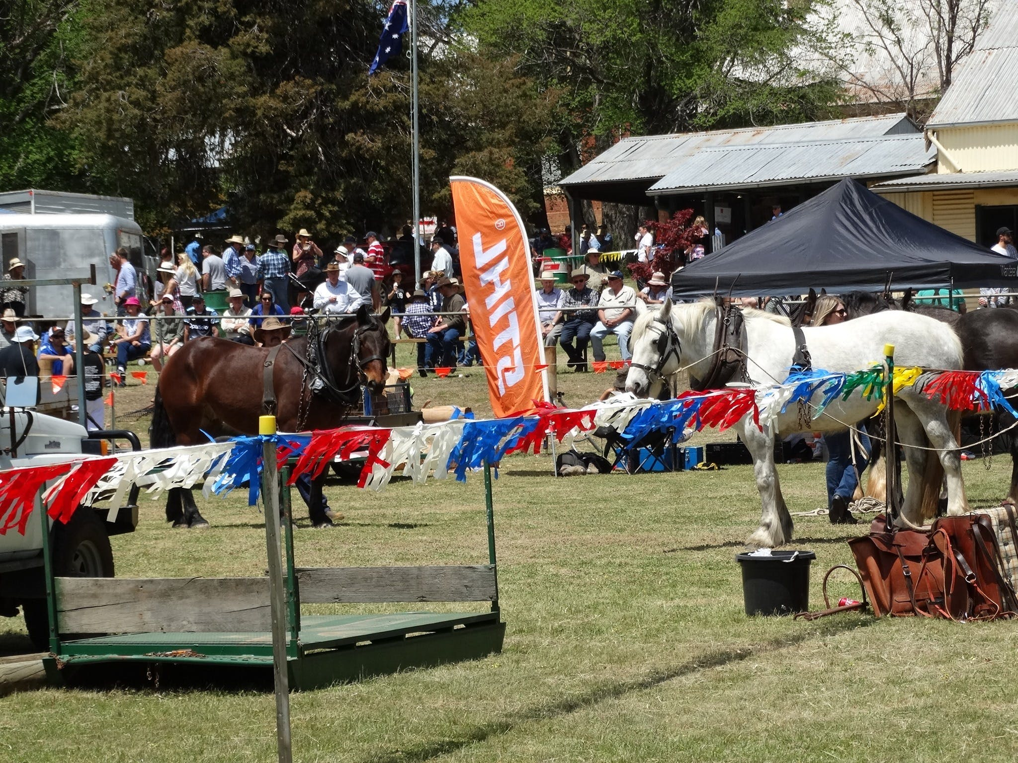 Carcoar Show - eAccommodation