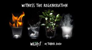 Wildfest - Annual Festival - eAccommodation