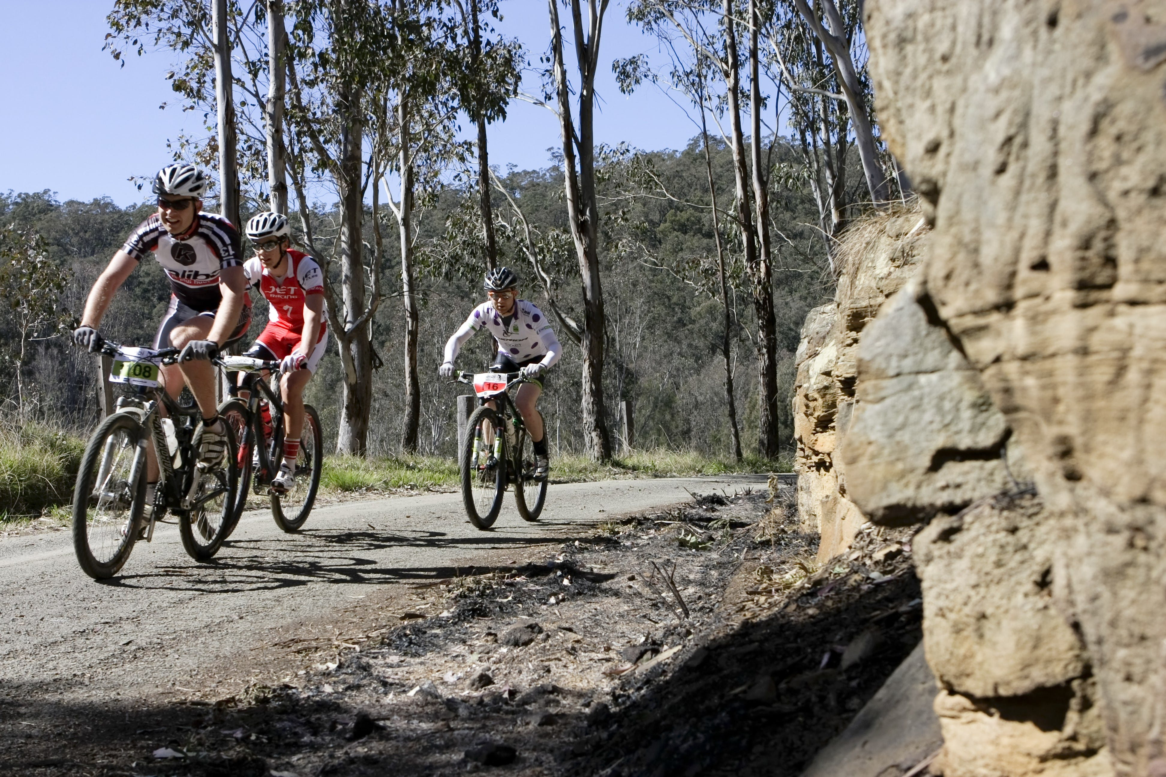 Wollombi Wild Ride Mountain Bike Ride - eAccommodation