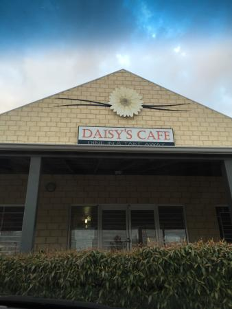 Daisy's Cafe - eAccommodation