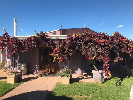 Jester Hill Wines - eAccommodation