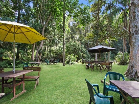 Rainforest - eAccommodation