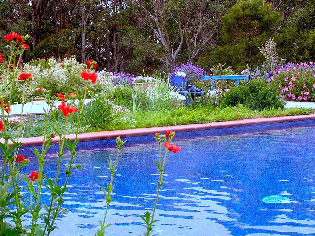 Lemonade Creek Cottages Lorne
