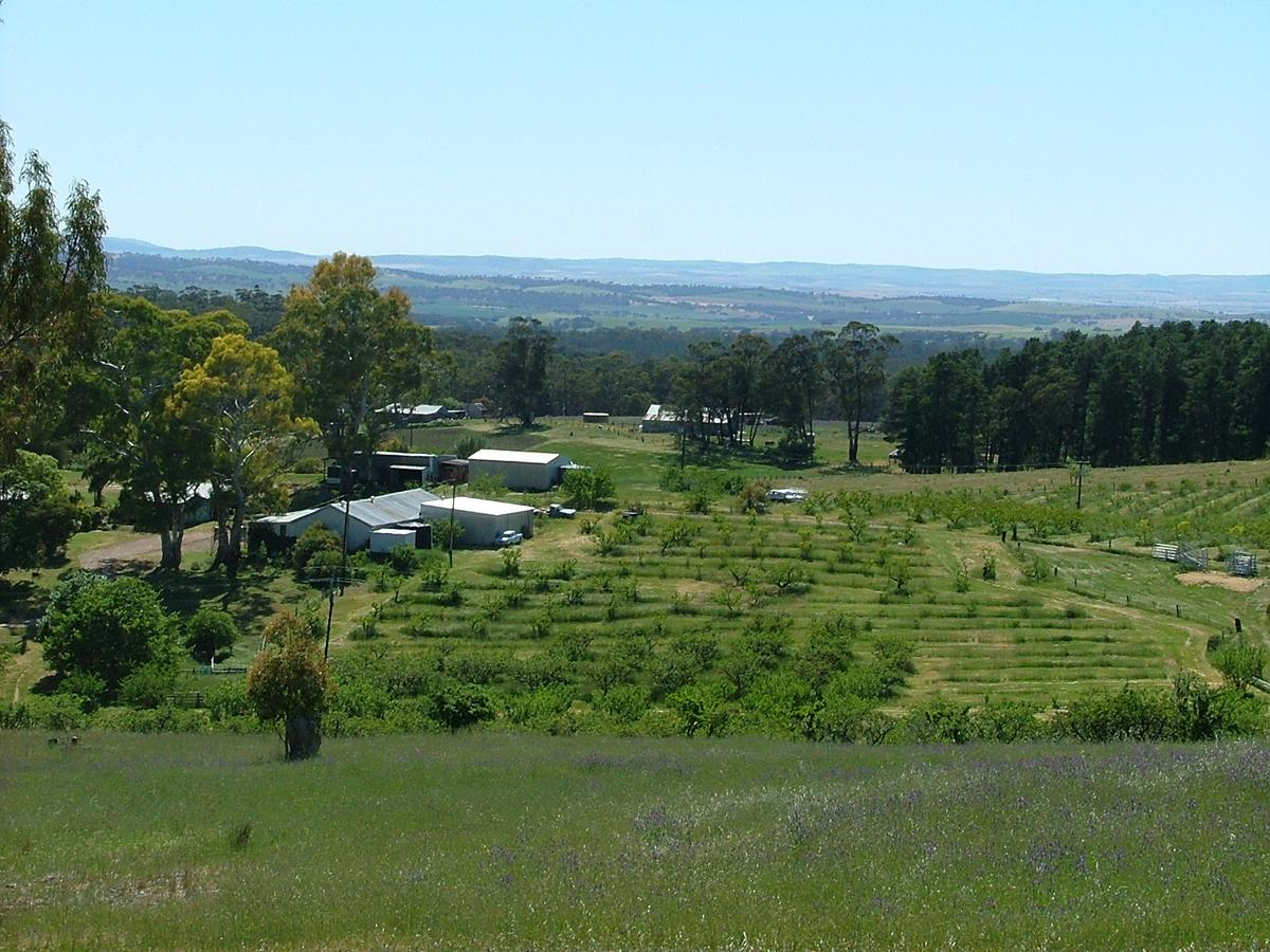 Taralee Orchards - eAccommodation