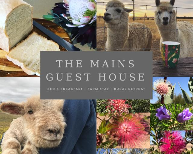 The Mains Guest House - eAccommodation
